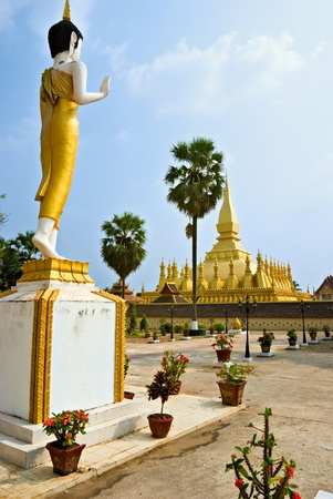 banian tree: The sacred Wat That Luang, Vientiaine,Laos.