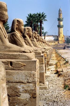 egyptian cobra: Sphinxs fuori dal tempio di Luxor, Egitto.