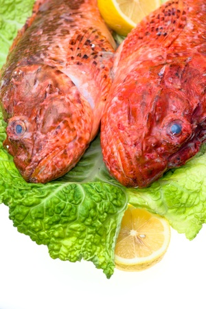 Fresh fish with with cabbage and lemon in a elegant dish Stock Photo - 9076002