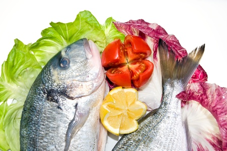 Fresh fish with with green and red salad, lemon and tomato. Stock Photo - 9076105
