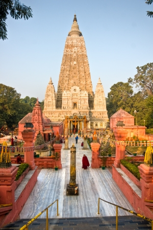 banian tree: Mahabodhy Temple, Bodhgaya, Bihar, India