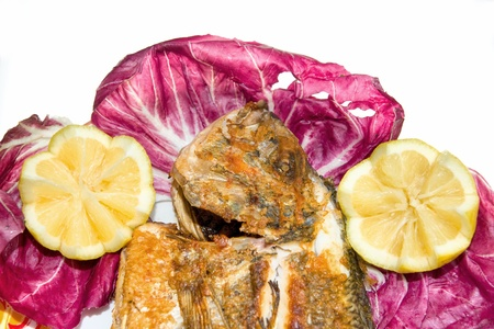 Fresh fish, Gilt-head Bream, grilled and served with red salad and lemon. Isolated on white. photo