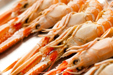 Fresh scampi ready to be cooked. photo