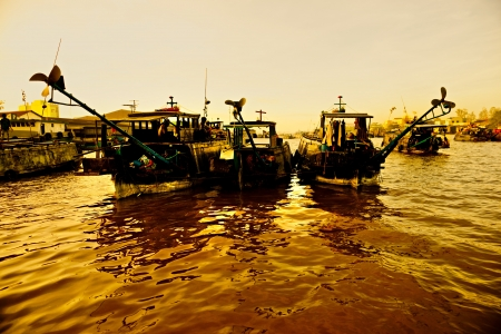can tho: Mekong delta, Can Tho, Vietnam