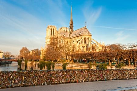la tour eiffel: Cathedral of Notre dame de Paris, France.