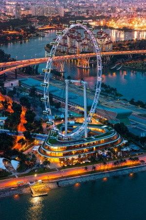View of Singapore at night with the Singapore Flyer.
