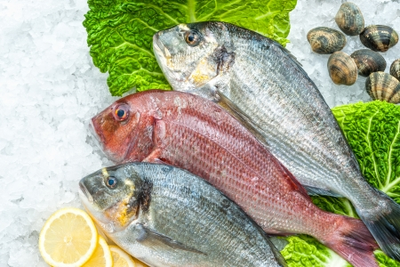 sparus: Seafood on ice at the fish market