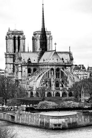Cathedral of Notre dame de Paris, France  photo