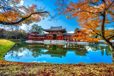 ave fenix: Byodo-en el templo. Kyoto, Japón. Editorial