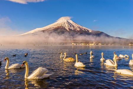 富士山は、日本の夜明け山中湖に反映されます。 写真素材