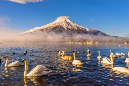 long lake: Mount Fuji reflected in Lake Yamanaka at dawn, Japan.