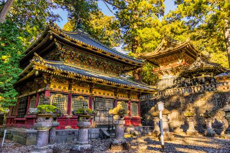shrine: Toshogu Shrine at sunrise, Nikko, Japan.