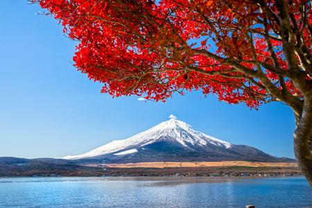 Mount Fuji reflected in Lake Yamanaka at dawn, Japan. photo
