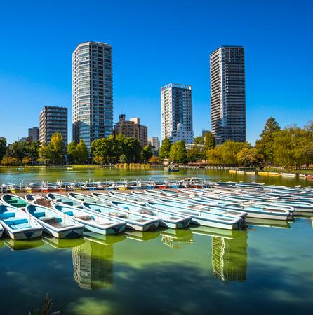 View of Ueno Park, Tokyo, Japan.