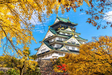 castle wall: Osaka Castle in Osaka with autumn leaves. Japan.