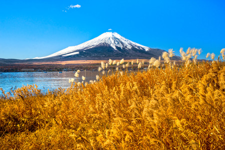 snow capped mountains: Mount Fuji reflected in Lake Yamanaka at dawn, Japan.