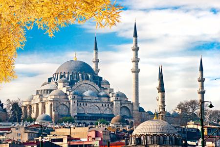 camii: The Suleiman Mosque (Turkish: Suleymaniye Camii), Istanbul, Turkey.