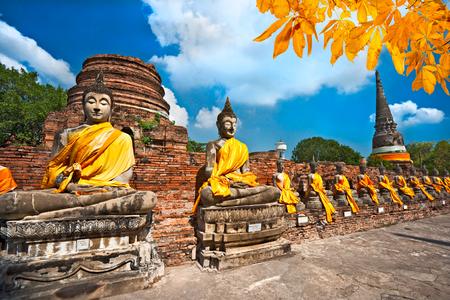 Raw of Buddha Statues in Ayutthaya, Thailand, Stock Photo