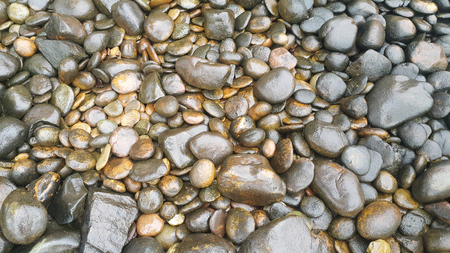background rock pattern with wet surface texture
