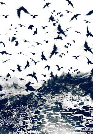 bird backround