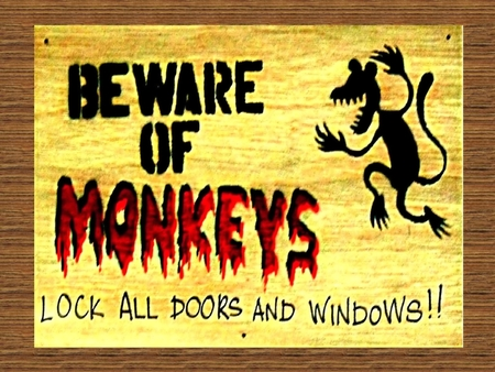 window graffiti: danger sign beware of monkey