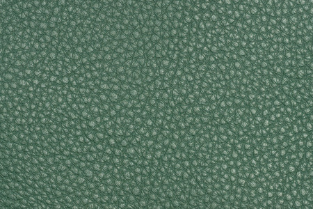 rawhide: clear empty natural green leather texture Stock Photo