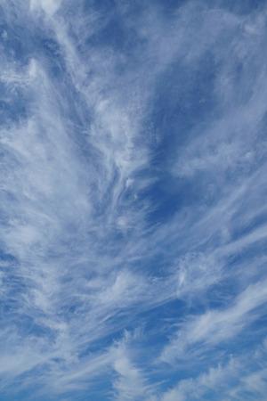 cloudscape: vertical tranquil cloudscape background