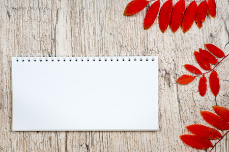empty notepad with red autumn rowan leaves on white wooden planks Zdjęcie Seryjne