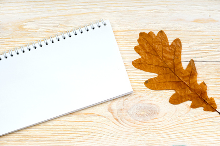 notepad with orange oak leaf on white wooden planks, autumn card template Banque d'images