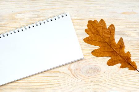 notepad with orange oak leaf on white wooden planks, autumn card template Zdjęcie Seryjne