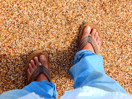 Feet in the pebble seashore
