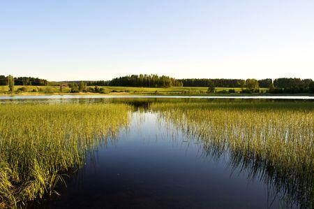 Calm lake Stock Photo - 5295243