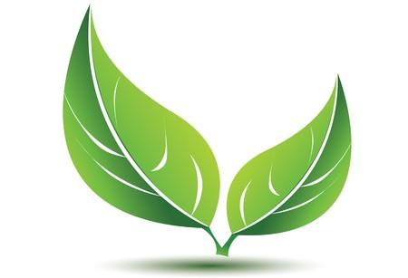 biologic: Green leafs
