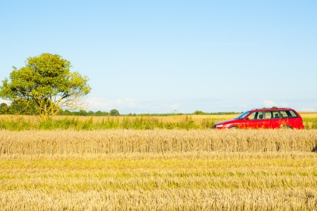 Red car parked near the wheat field photo