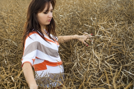 Young beautiful girl standing in the rape field photo