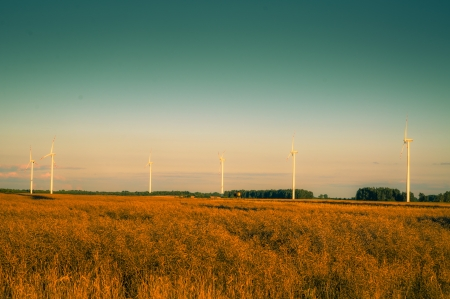 An image of windturbines at dusk photo