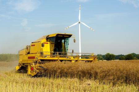 An image of combine harvesting rape Stock Photo - 16235450