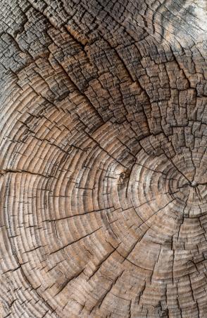 Een afbeelding van houten achtergrond Stockfoto