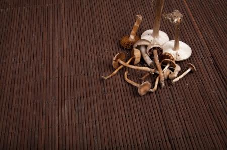 An image of toxic mushrooms Stock Photo - 16477110