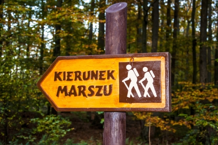 An image of sign in the forest photo