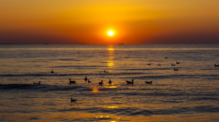 An image of sunset over baltic sea Stock Photo - 16777578