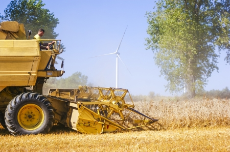 An image of combine harvesting corn photo