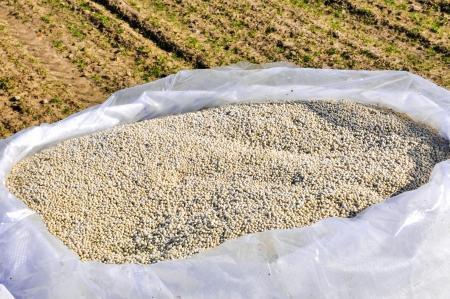 an image of nitrogenous fertilizer Foto de archivo