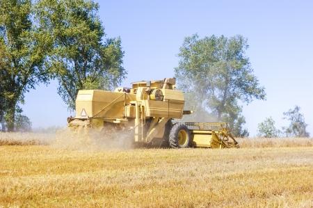 An image of combine harvesting corn photo