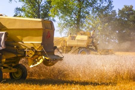 An image of combine harvesting corn Stock Photo - 16927027