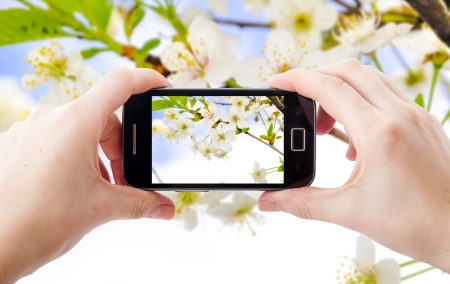An image of shooting photographs with mobile phone Stock Photo