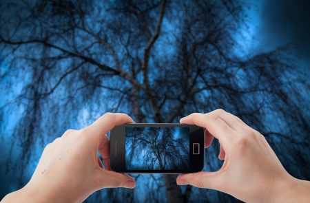 An image of shooting photographs with mobile phone Stock Photo - 17293997