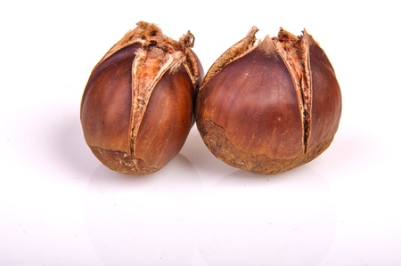 An image of roasted chestnut marron isolated. Castanea Sativa Stock Photo - 17427204