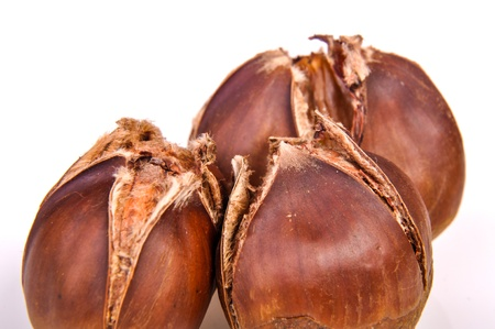 An image of roasted chestnut marron isolated. Castanea Sativa Stock Photo - 17427275