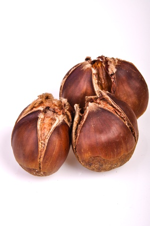 An image of roasted chestnut marron isolated. Castanea Sativa Stock Photo - 17427209